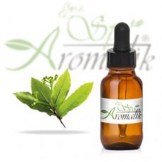 Uleiul eteric de camforă (cinnamomum camphora)